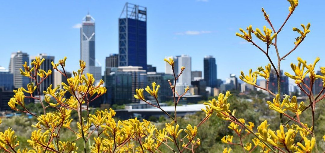 What's open in Perth City this weekend?