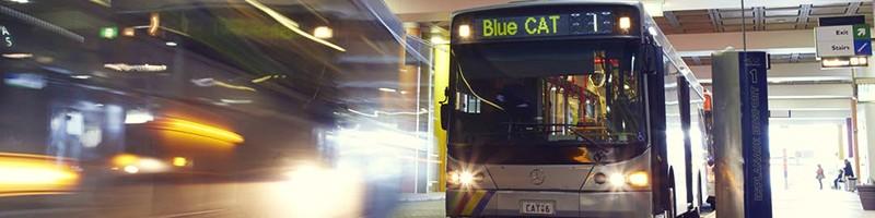 Holiday Inn Perth City Centre - Perth Tours - Explore - CAT bus